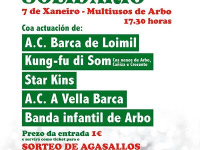 Festival Infantil Solidario 2017-06
